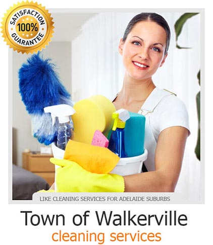 Exit Cleaning Town of Walkerville